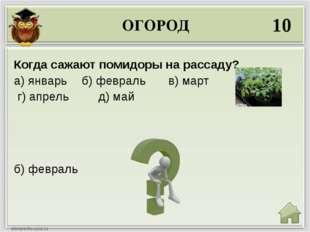 ОГОРОД 10 б) февраль Когда сажают помидоры на рассаду? а) январь б) февраль