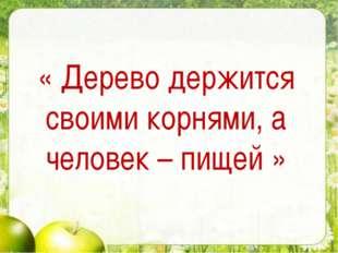 « Дерево держится своими корнями, а человек – пищей »