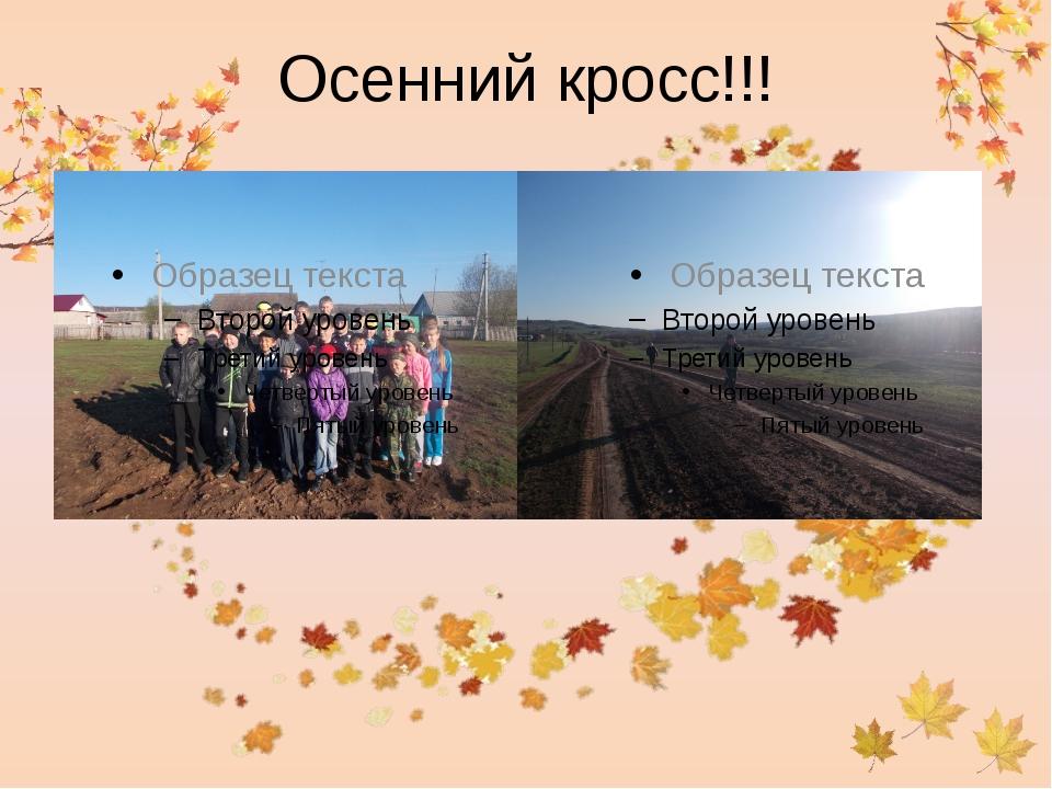 Осенний кросс!!!