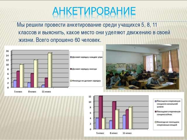 Мы решили провести анкетирование среди учащихся 5, 8, 11 классов и выяснить,...