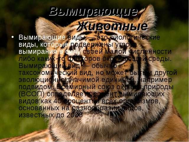 Вымирающие Животные Вымирающие виды — это биологические виды, которые подверж...