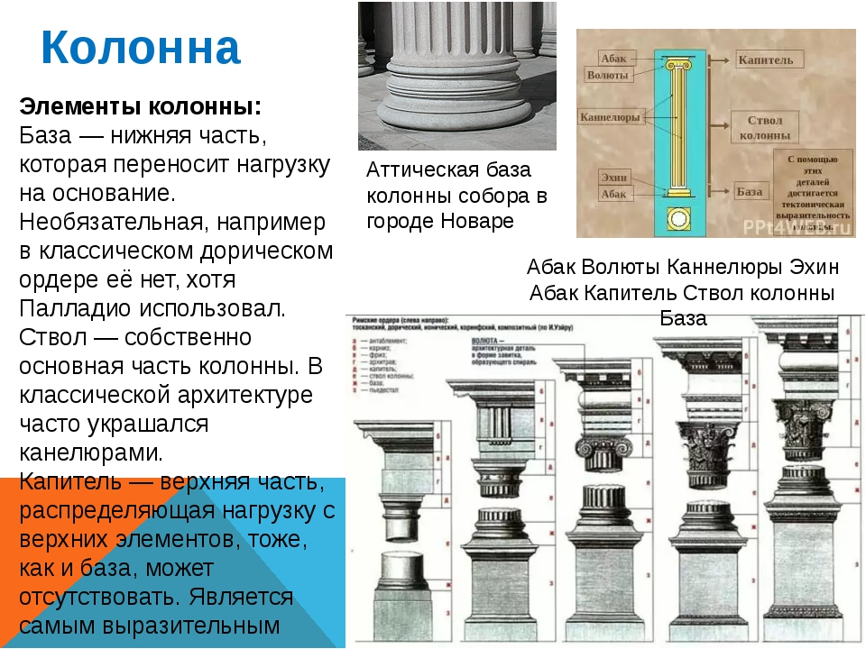 Колонна Элементы колонны: База — нижняя часть, которая переносит нагрузку на...