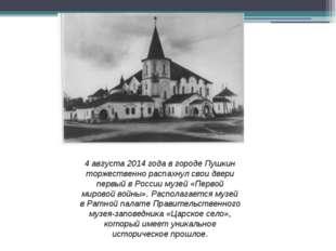 4 августа 2014 года в городе Пушкин торжественно распахнул свои двери первый