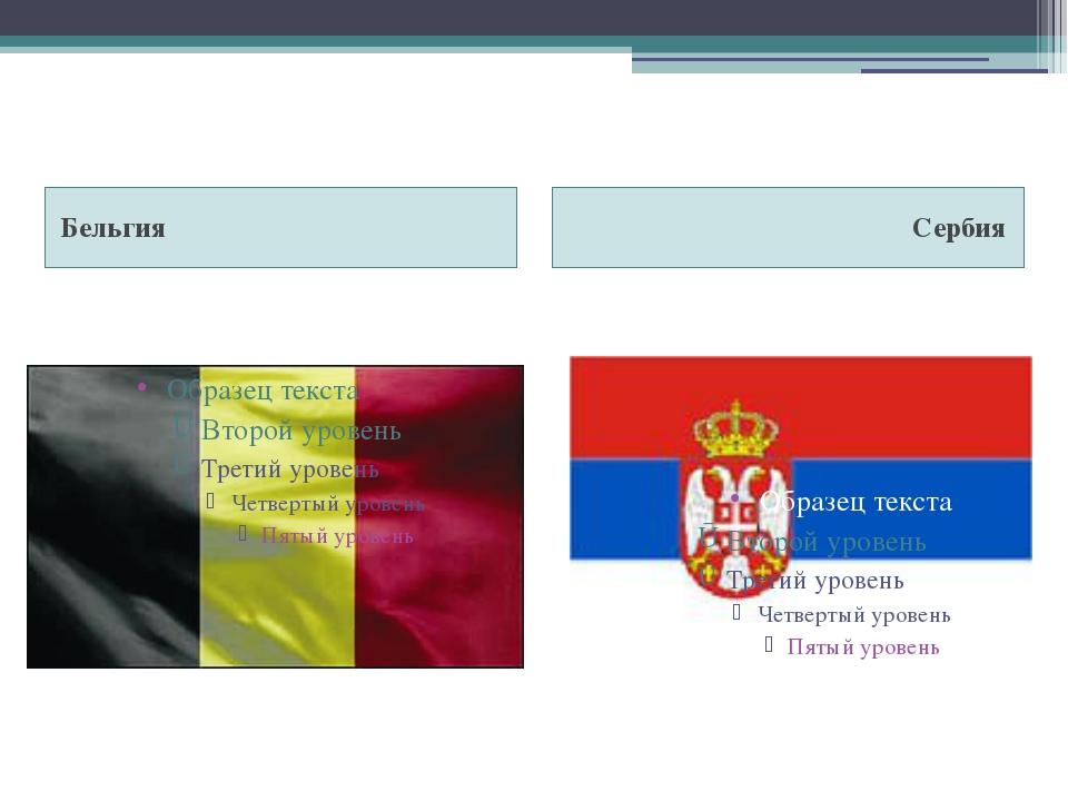 Бельгия Сербия