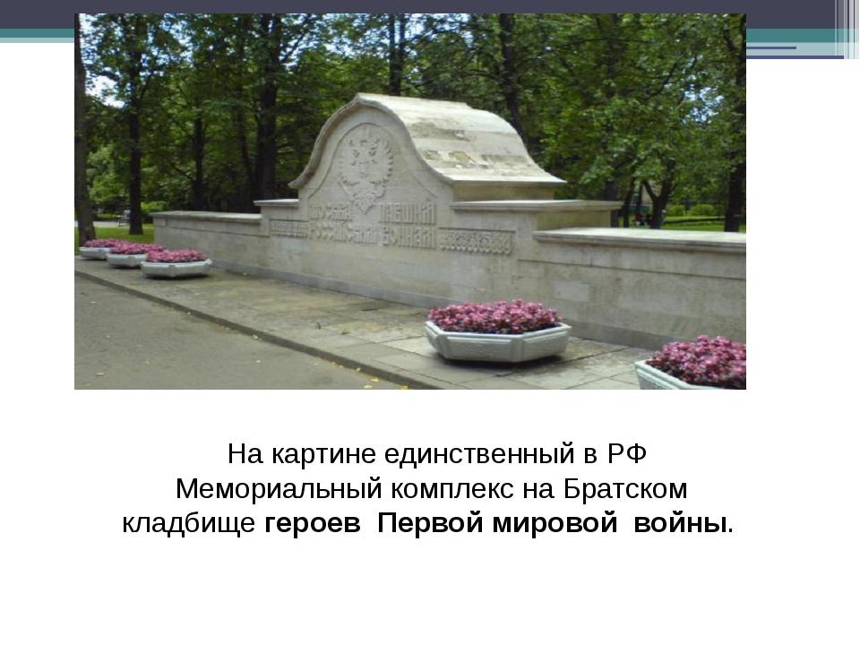 На картине единственный в РФ Мемориальный комплекс на Братском кладбищегеро...