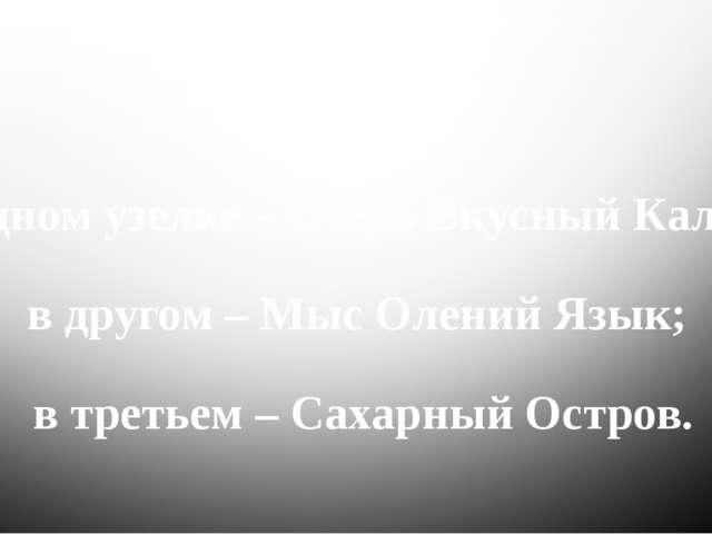 В одном узелке – Озеро Вкусный Калач; в другом – Мыс Олений Язык; в третьем...