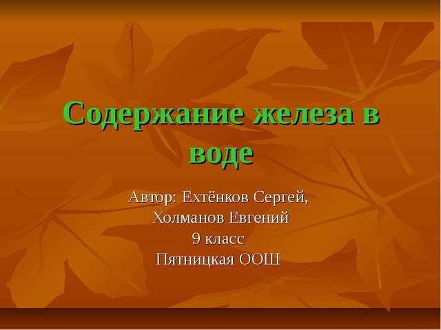 Содержание железа в воде Автор: Ехтёнков Сергей, Холманов Евгений 9 класс Пят...