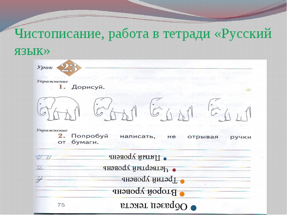 Чистописание, работа в тетради «Русский язык»