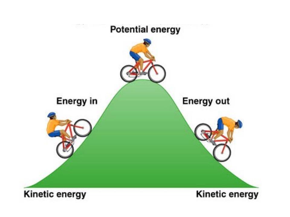 conservation of momentumenergy essay