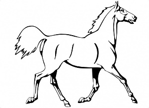 Running Horse Coloring Pages For Kids