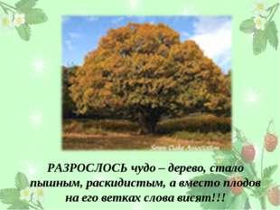 РАЗРОСЛОСЬ чудо – дерево, стало пышным, раскидистым, а вместо плодов на его в