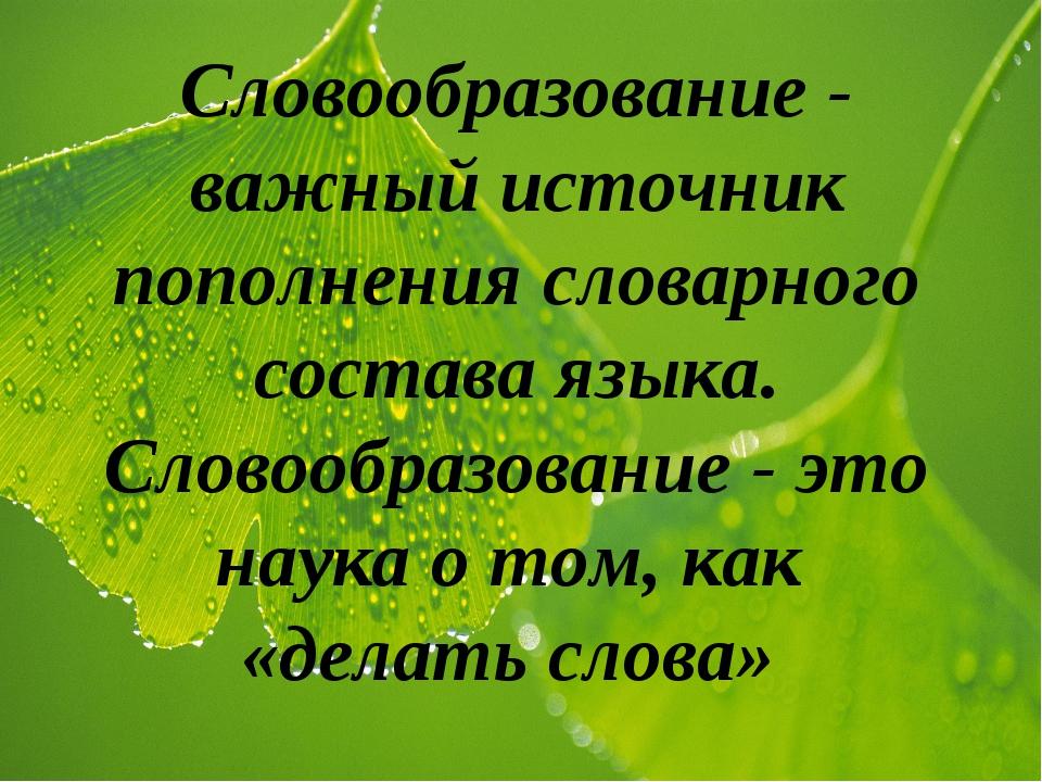Словообразование - важный источник пополнения словарного состава языка. Слово...