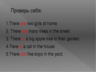 Проверь себя: 1.There are two girls at home. 2. There are many trees in the s