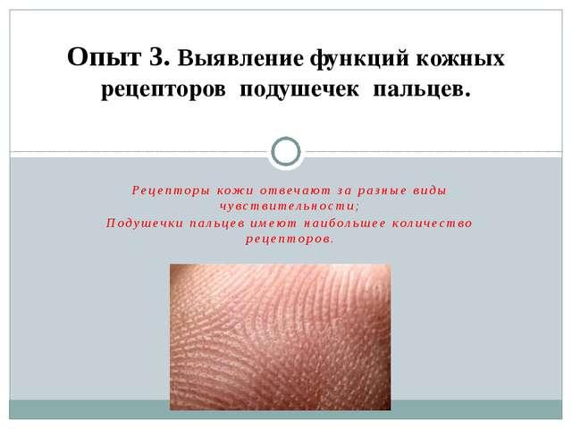 Рецепторы кожи отвечают за разные виды чувствительности; Подушечки пальцев им...