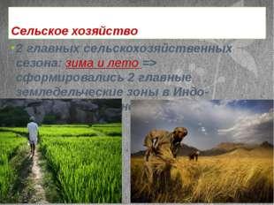 Сельское хозяйство 2 главных сельскохозяйственных сезона: зима и лето => сфор