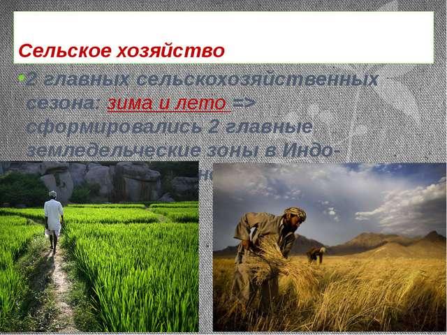 Сельское хозяйство 2 главных сельскохозяйственных сезона: зима и лето => сфор...