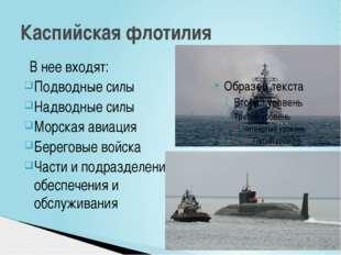 В нее входят: Подводные силы Надводные силы Морская авиация Береговые войска
