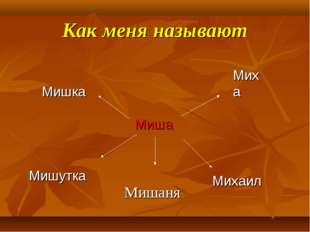 Как меня называют Мишаня Миша Михаил Миха Мишка Мишутка