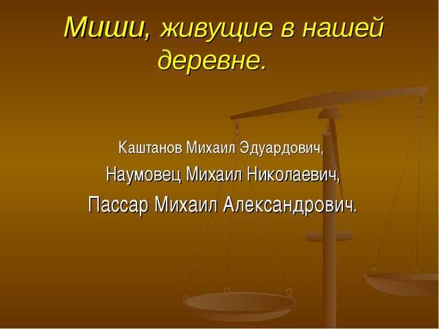 Миши, живущие в нашей деревне. Каштанов Михаил Эдуардович, Наумовец Михаил Н...