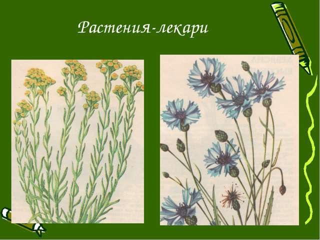 Растения-лекари