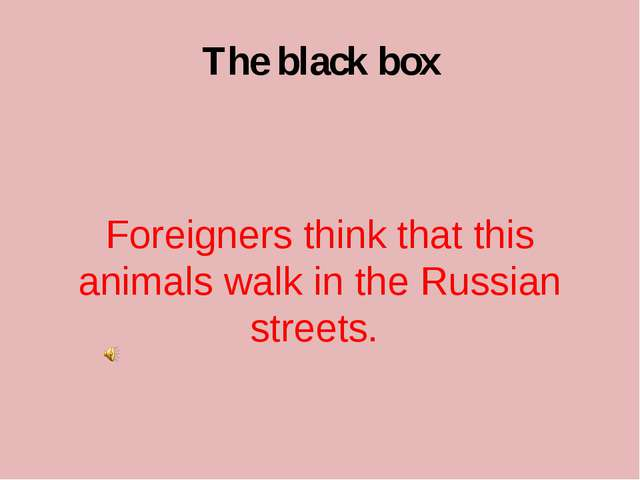 The black box Foreigners think that this animals walk in the Russian streets.
