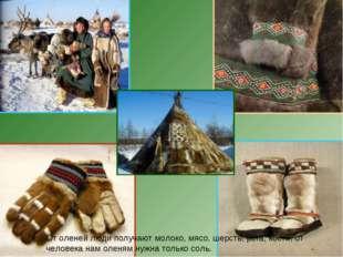 От оленей люди получают молоко, мясо, шерсть, рога, кости, от человека нам о