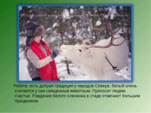 Ребята, есть добрая традиция у народов Севера, белый олень считается у них с