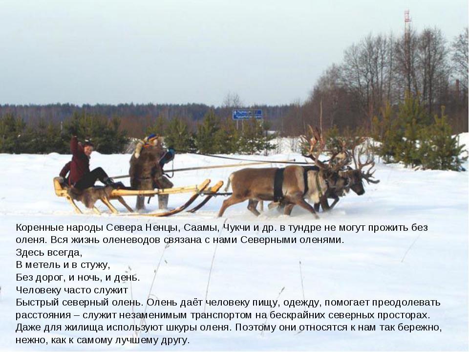 Коренные народы Севера Ненцы, Саамы, Чукчи и др. в тундре не могут прожить б...