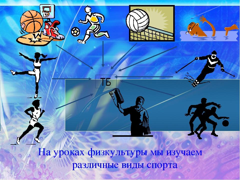 На уроках физкультуры мы изучаем различные виды спорта ТБ