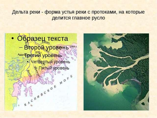 Дельта реки - форма устья реки с протоками, на которые делится главное русло