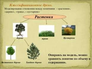 Классификационное древо. Моделирование отношения между понятиями - «растения»