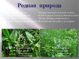 Родная природа Люблю я раннюю весну, Лес ароматом наполняет, Красивей нет цве