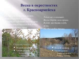 Весна в окрестностях г. Красноармейска На иве распустились почки, Берёза слаб