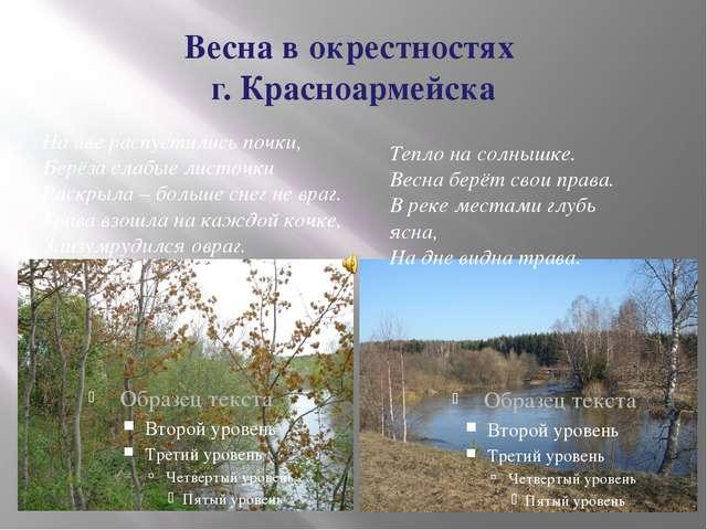 Весна в окрестностях г. Красноармейска На иве распустились почки, Берёза слаб...