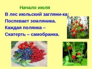 Начало июля В лес июльский загляни-ка: Поспевает земляника. Каждая полянка –
