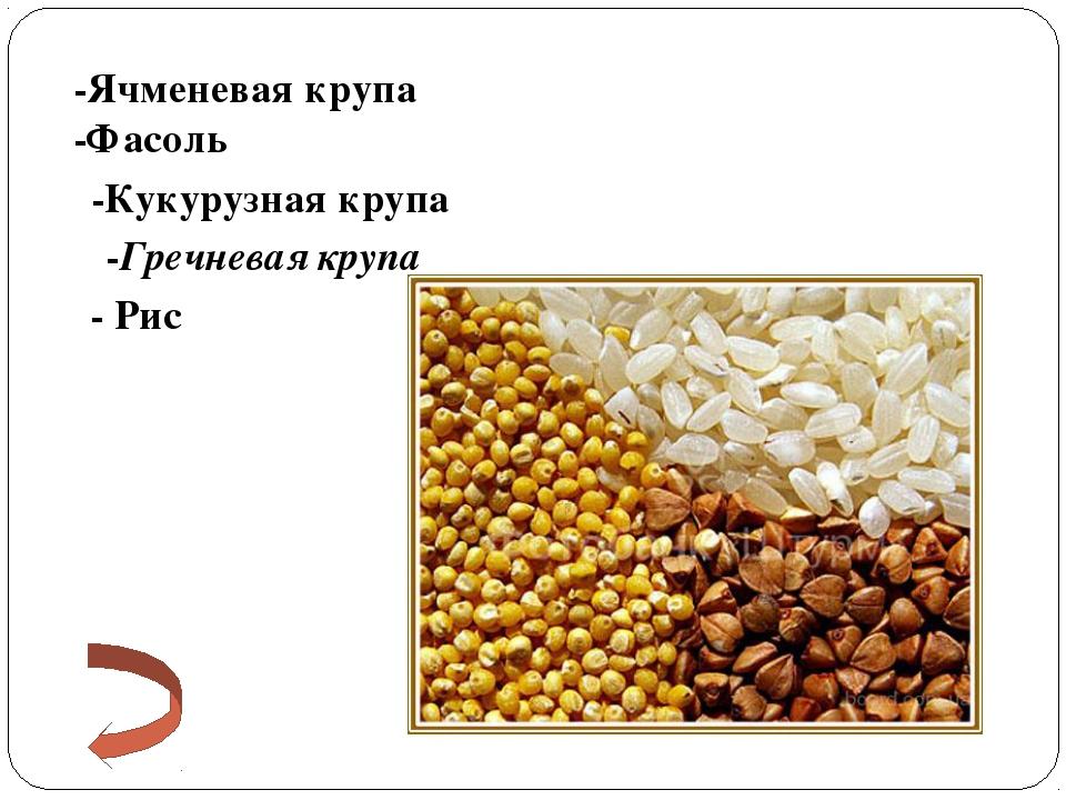 -Ячменевая крупа -Фасоль -Кукурузная крупа -Гречневая крупа - Рис