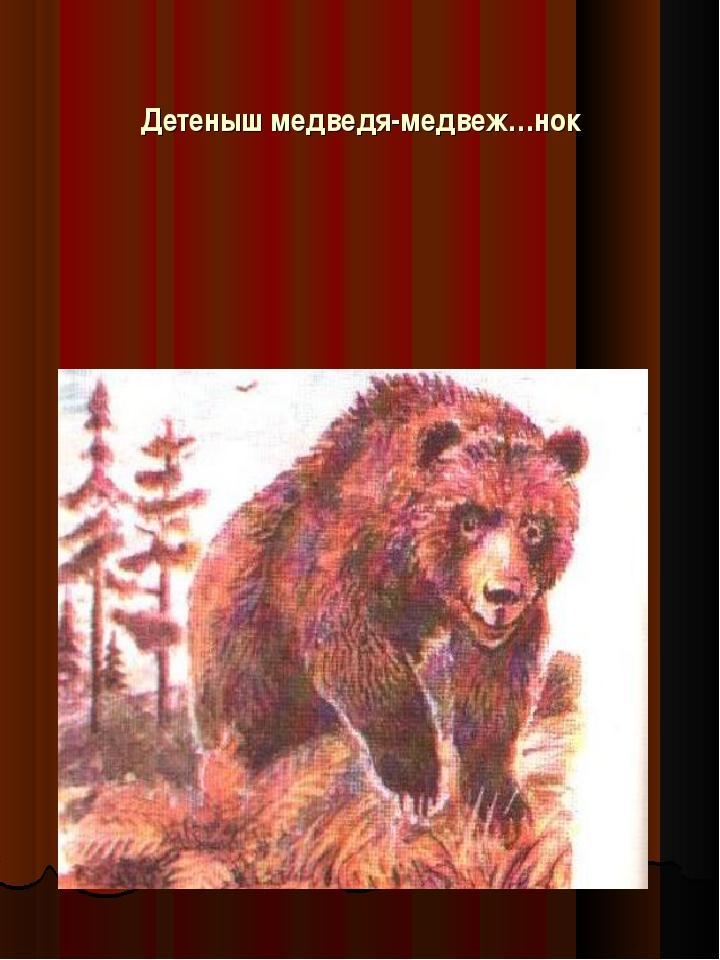 Детеныш медведя-медвеж…нок