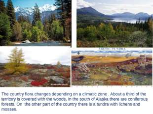 The country flora changes depending on a climatic zone . About a third of the