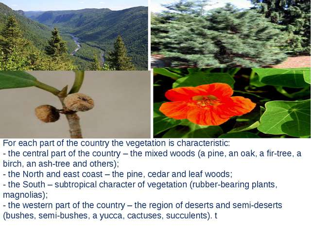 For each part of the country the vegetation is characteristic: - the central...