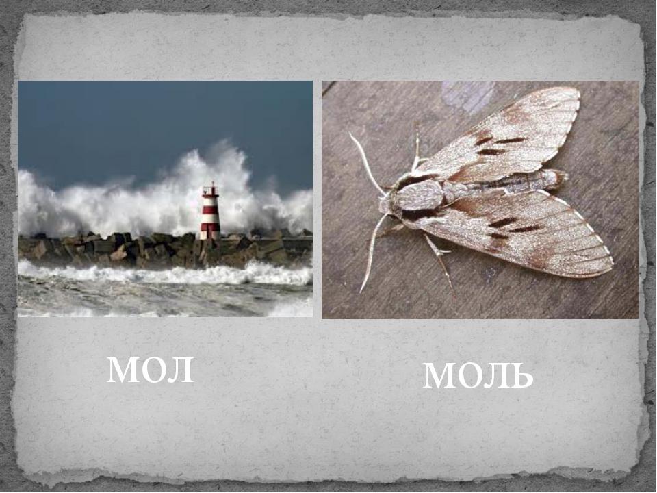 мол моль