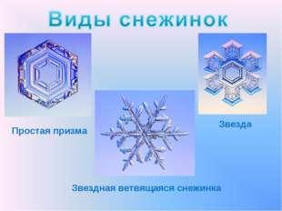 Простая призма Звезда Звездная ветвящаяся снежинка