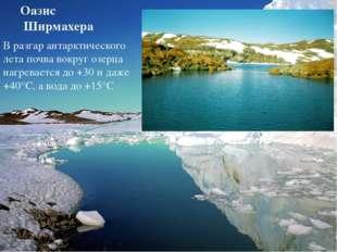 Оазис Ширмахера В разгар антарктического лета почва вокруг озерца нагревается