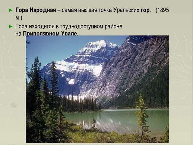 ГораНародная– самая высшая точкаУральскихгор. (1895 м )  Гора находитс...