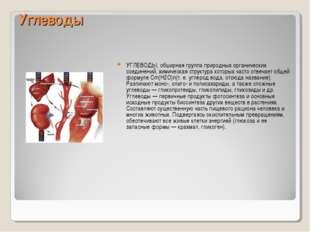 Углеводы УГЛЕВОДЫ, обширная группа природных органических соединений, химичес