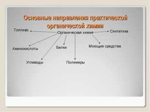 Основные направления практической органической химии Органическая химия Амино
