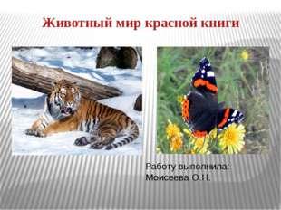 Животный мир красной книги Работу выполнила: Моисеева О.Н.