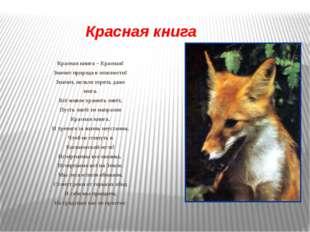 Красная книга Красная книга – Красная! Значит природа в опасности! Значит, не