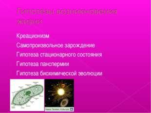 Креационизм Самопроизвольное зарождение Гипотеза стационарного состояния Гипо