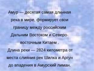 Амур — десятая самая длинная река в мире, формирует свои границу между россий