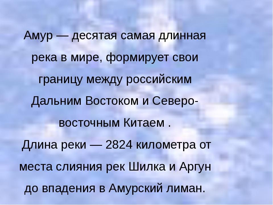 Амур — десятая самая длинная река в мире, формирует свои границу между россий...